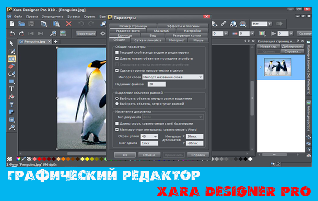 Графический редактор Xara Designer Pro RUS