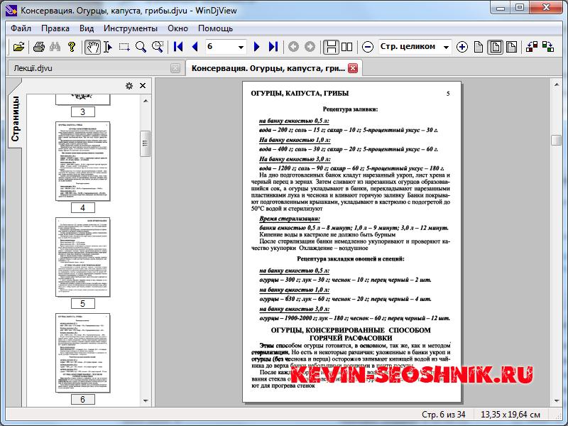 Программ чтения djvu на российском